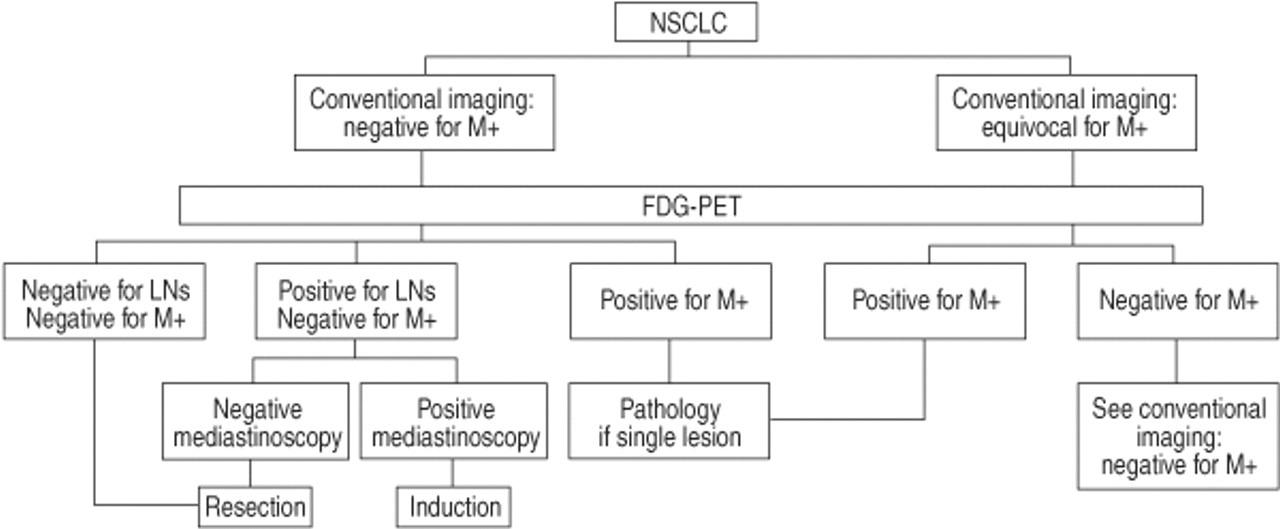 Imaging in lung cancer: positron emission tomography scan