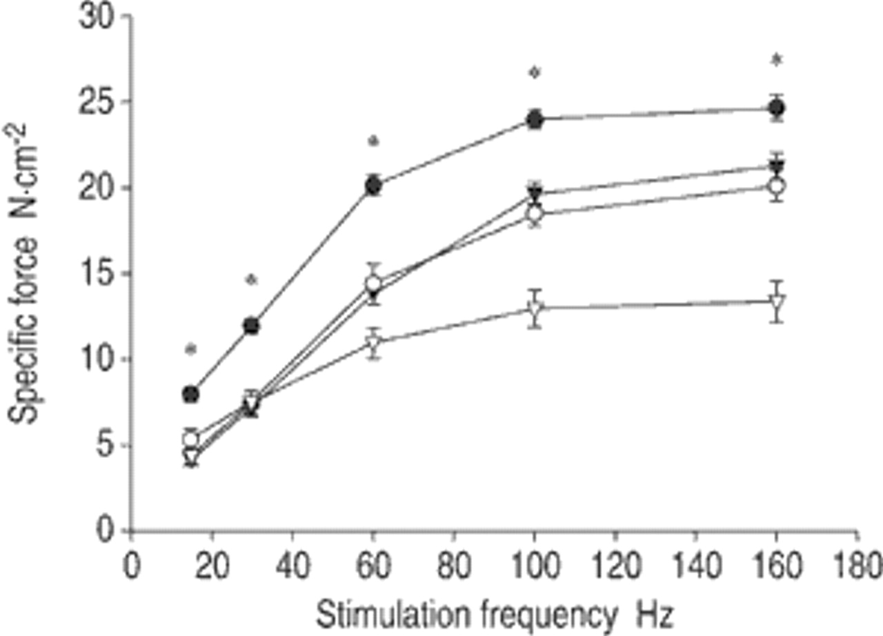 Effects of mechanical ventilation on diaphragm function and