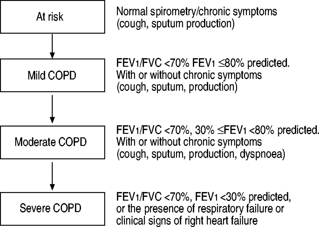 systemic inflammation in chronic obstructive pulmonary