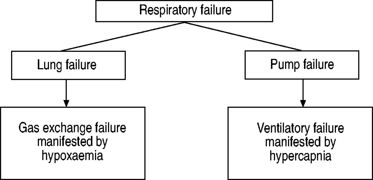 Respiratory Failure European Society Free Information Color Organ Electronic Circuit Schematic Download Figure