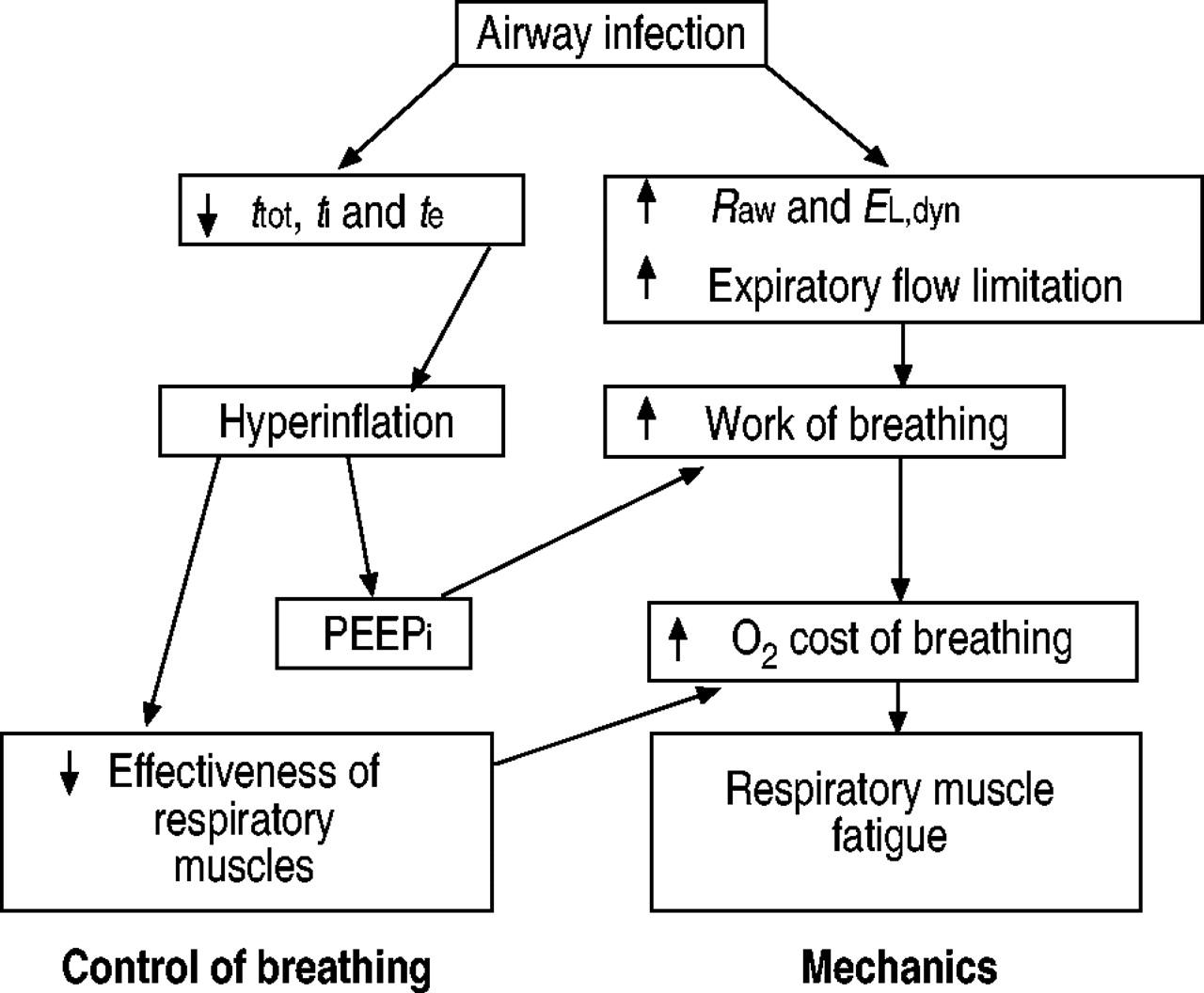 respiratory failure | european respiratory society, Skeleton