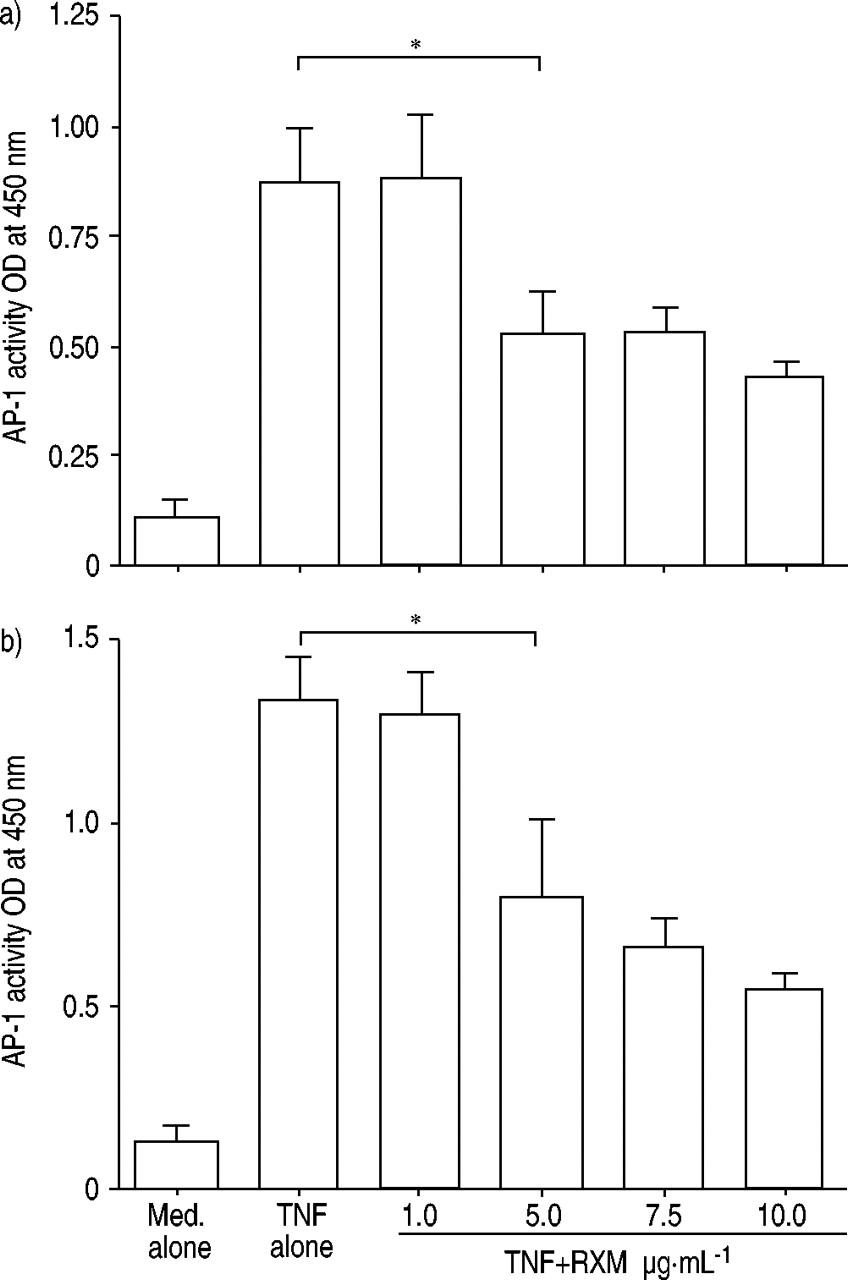 cephalexin allergy and ancef