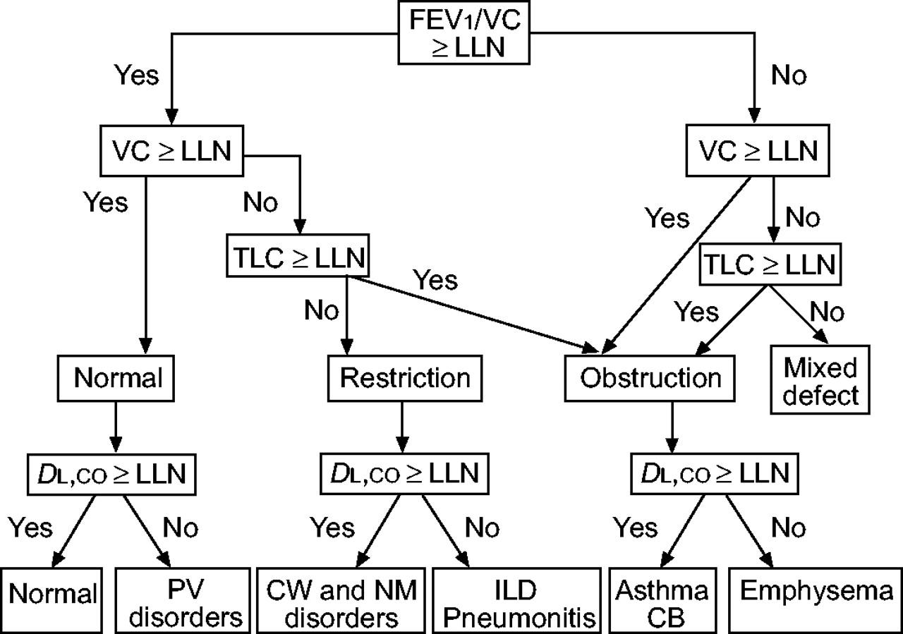 Interpretative Strategies For Lung Function Tests European
