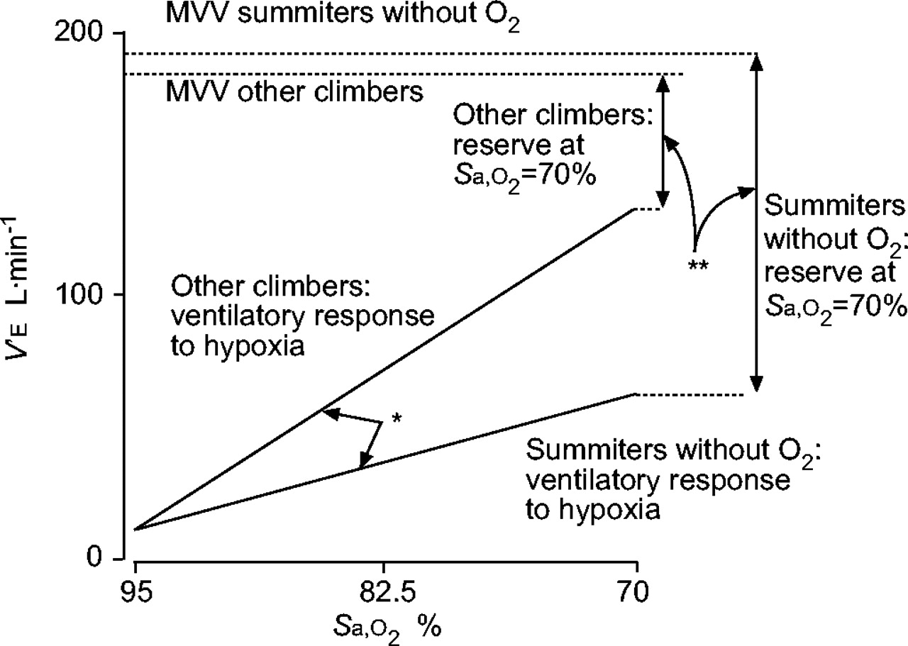 hypoxic ventilatory response in successful extreme altitude climbers