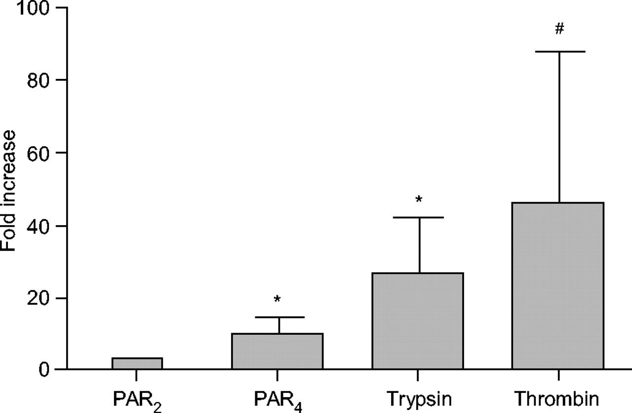 trypsin activation diagram