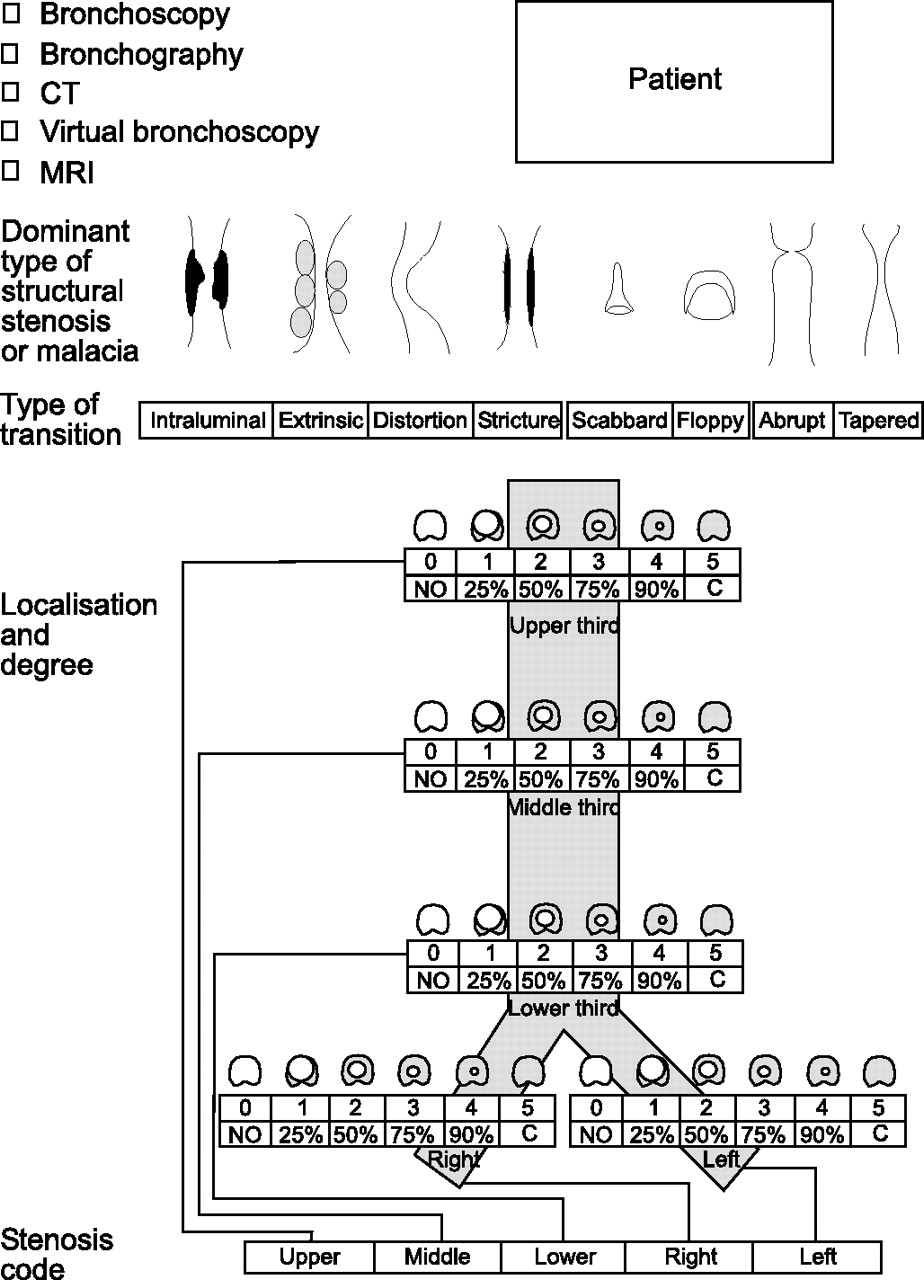 A Proposed Classification System Of Central Airway