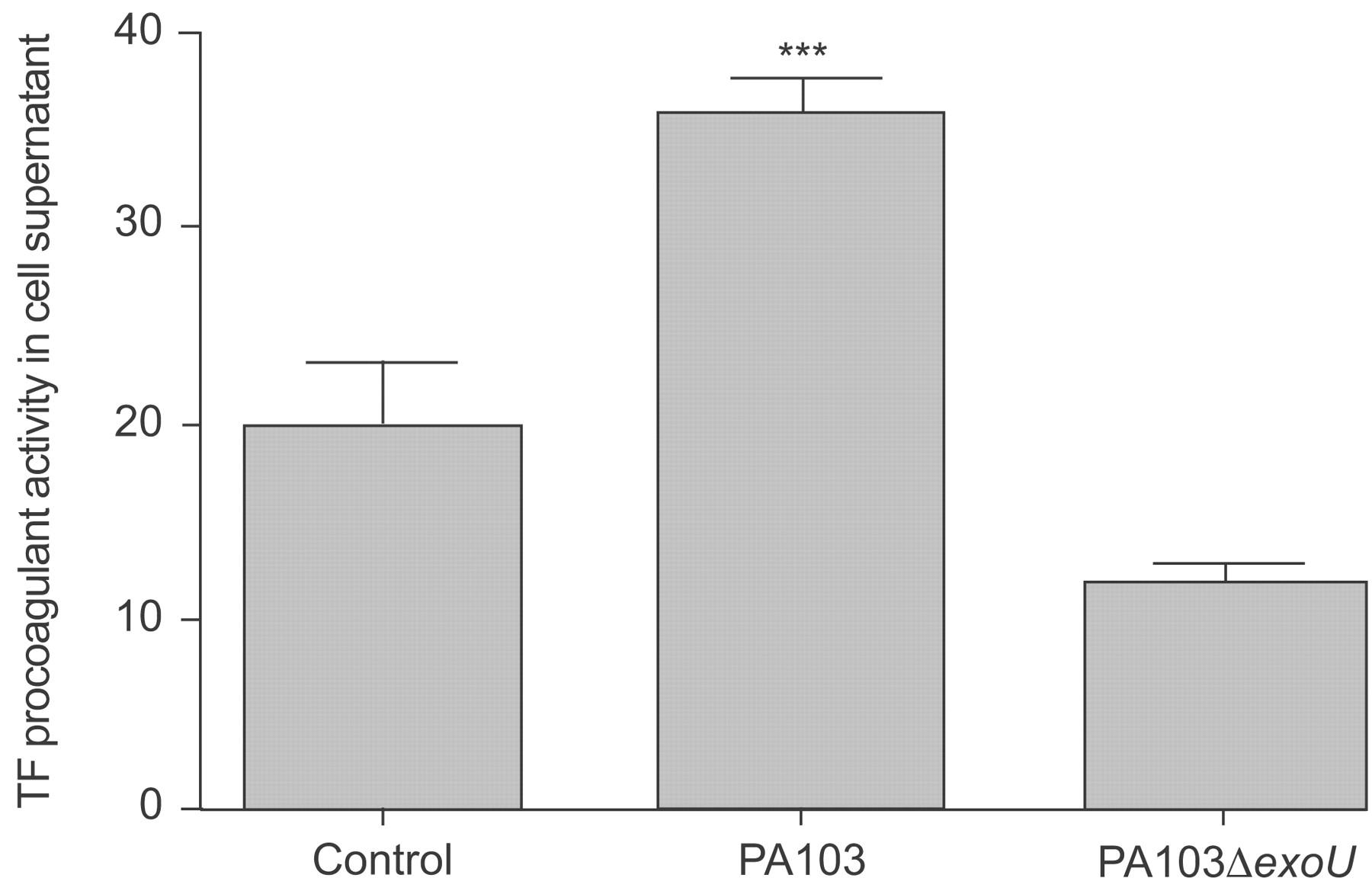 infection pseudomonas aeruginosa