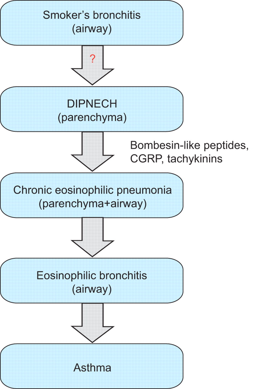 pathophysiology of pneumonia Learn what you need to know about pneumonia watch a  respiratory pathology: respiratory tract conditionslower respiratory tract infection  pneumonia.