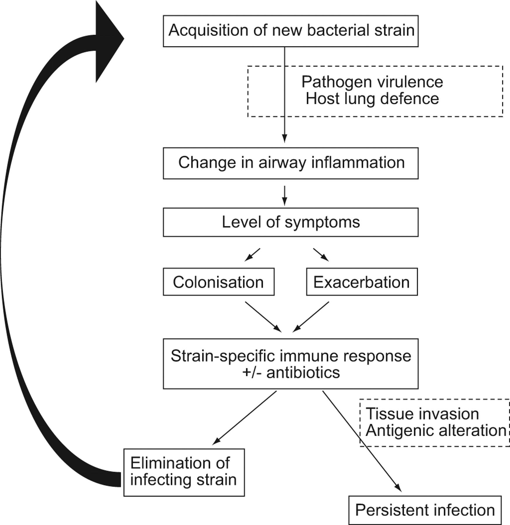 F Large Chronic Obstructive Airways Disease Pathophysiology