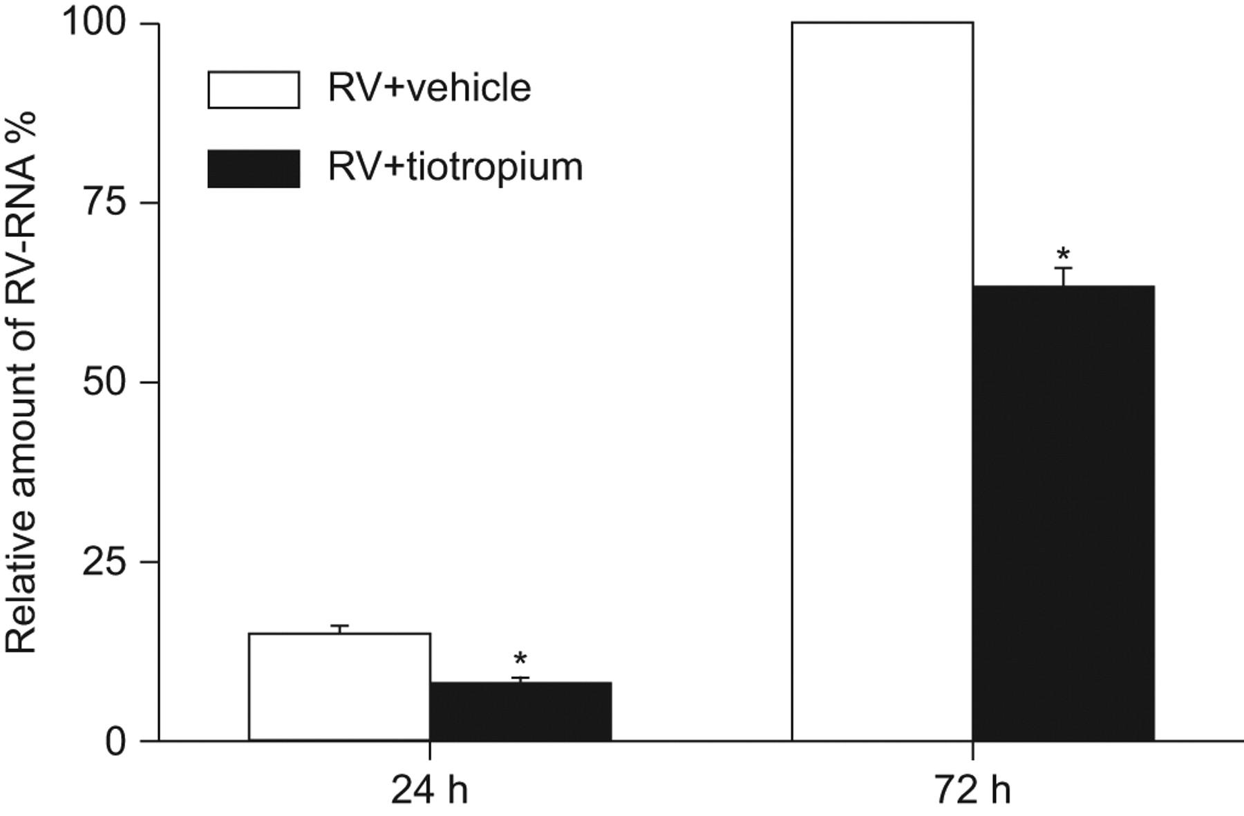 Inhibitory Effects Of Tiotropium On Rhinovirus Infection In Human Airway Epithelial Cells European Respiratory Society