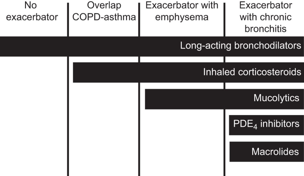 Treatment of COPD by clinical phenotypes: putting old evidence ...