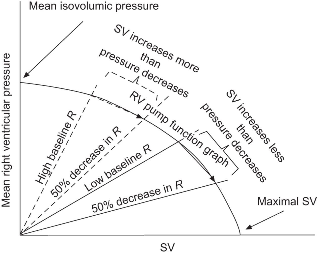 Describing Right Ventricular Function European Respiratory Society