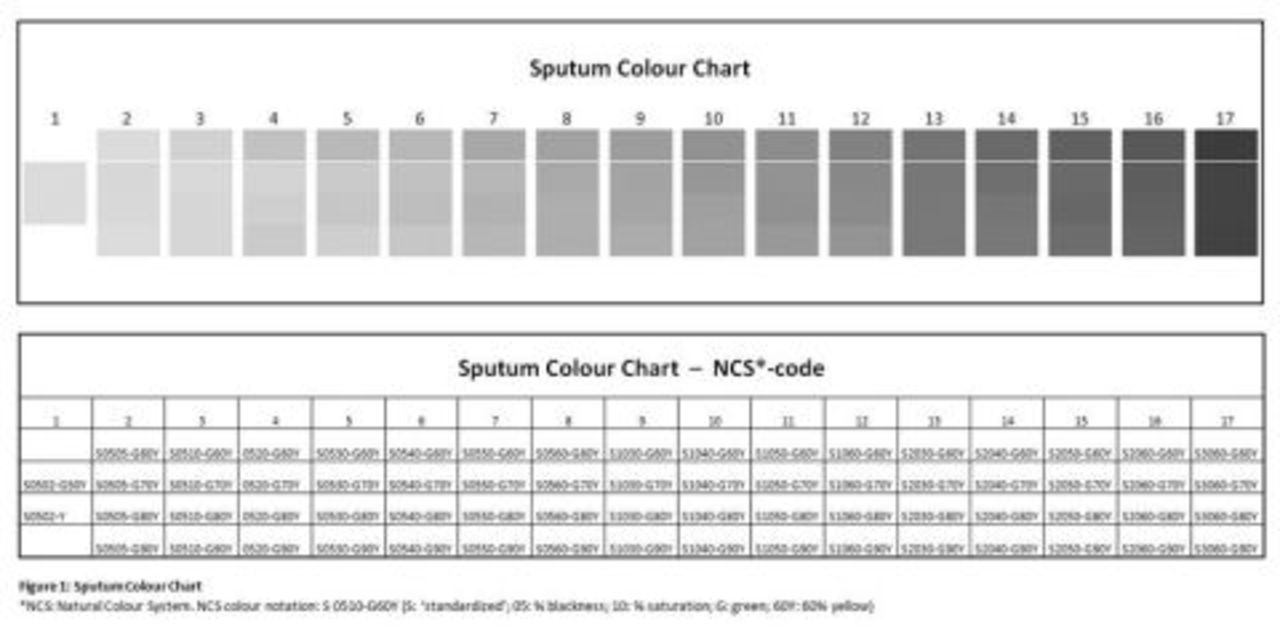 Development Of A Standardized Sputum Colour Chart Based On The