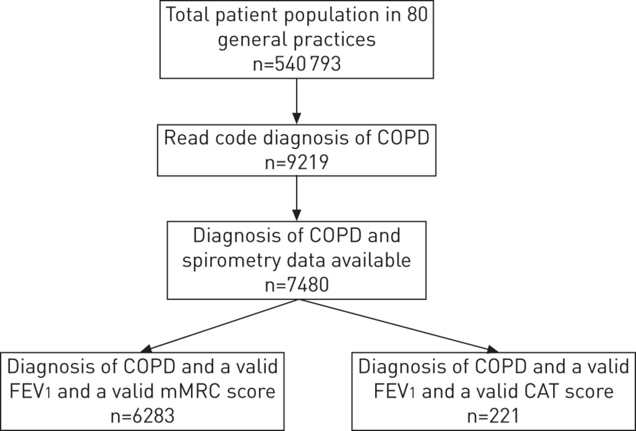Flowchart 2018 Example Guidelines Copd For Management