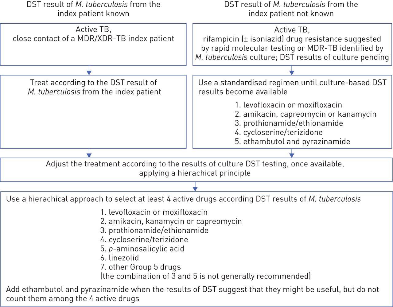 management of patients with multidrug-resistant/extensively drug