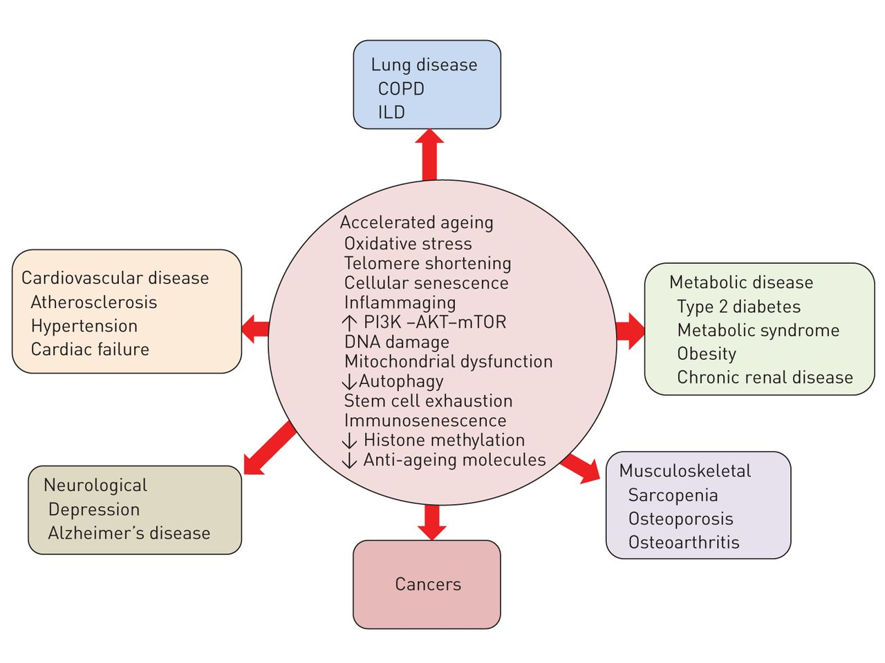 control mechanism s powerpoint Recognition of pathogens and effector mechanisms iii  if the innate immune  response cannot control and eliminate pathogens it initiates and.