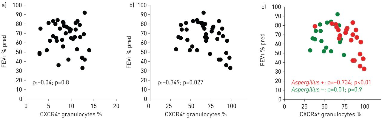 CXCR4+ granulocytes reflect fungal cystic fibrosis lung