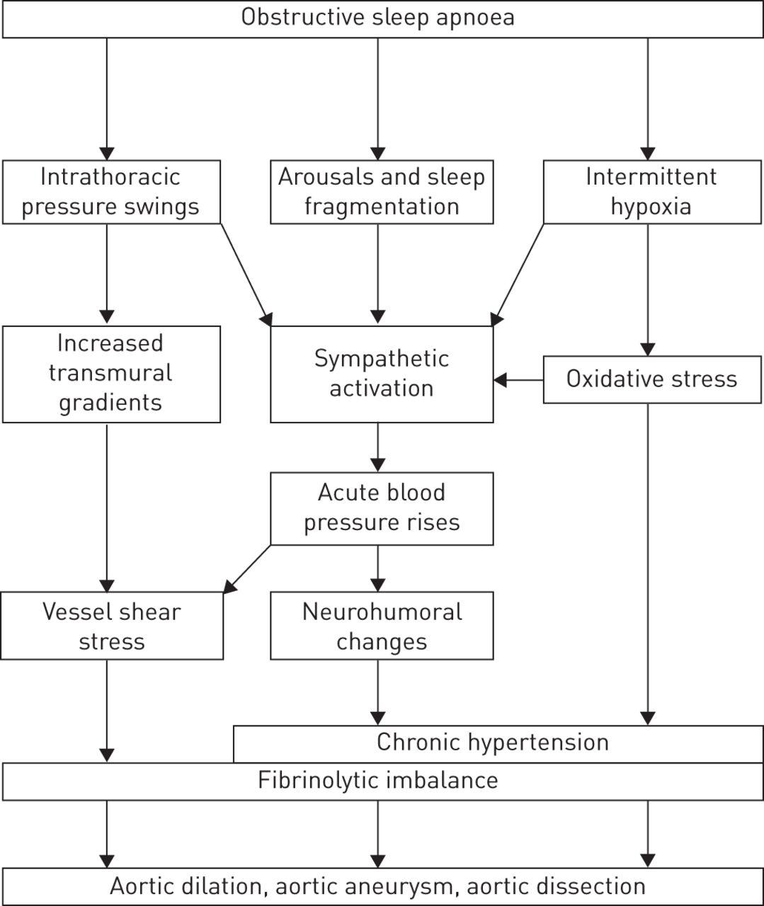 The impact of obstructive sleep apnoea on the aorta | European