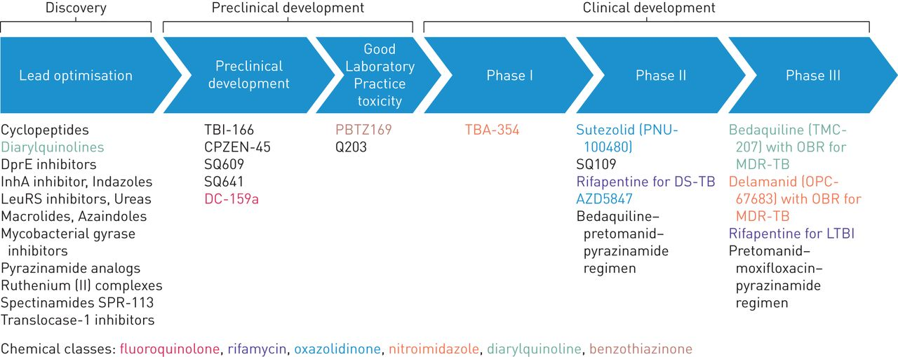 Bedaquiline and multidrug-resistant tuberculosis: a systematic and critical  analysis of the evidence | European Respiratory Society