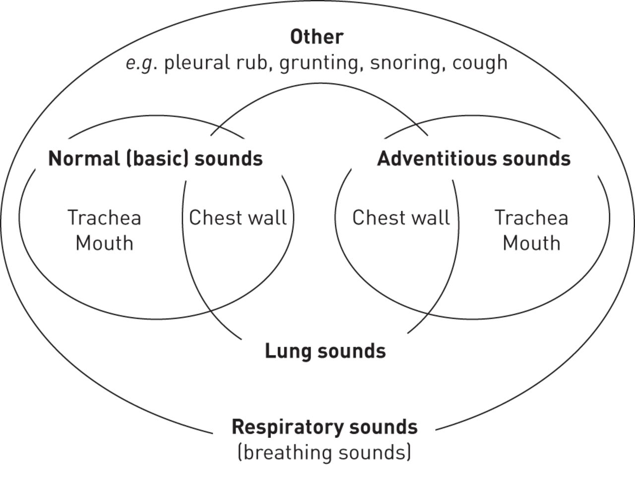 Towards the standardisation of lung sound nomenclature