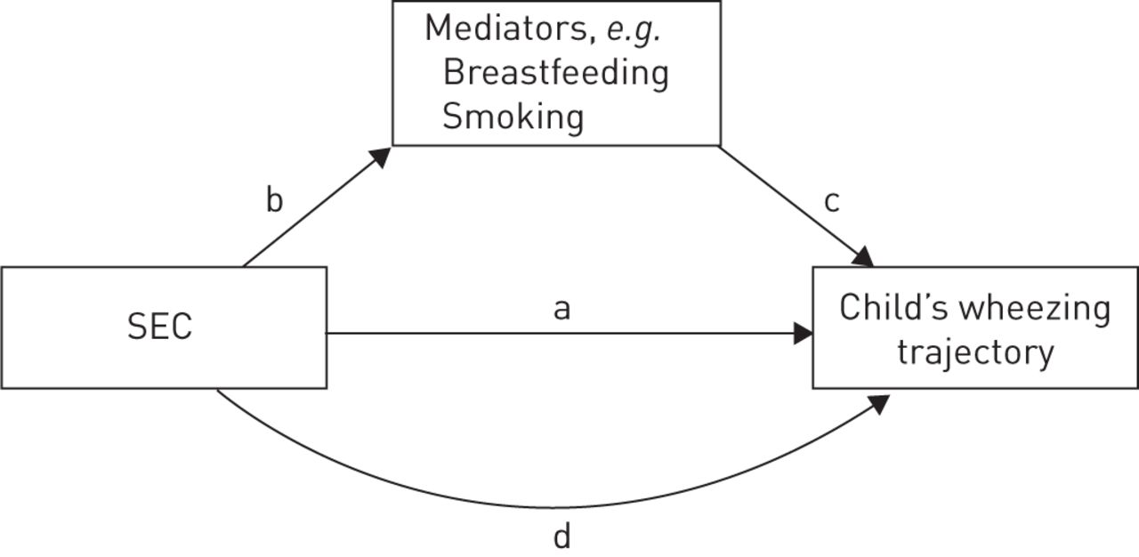 Social inequalities in wheezing in children: findings from