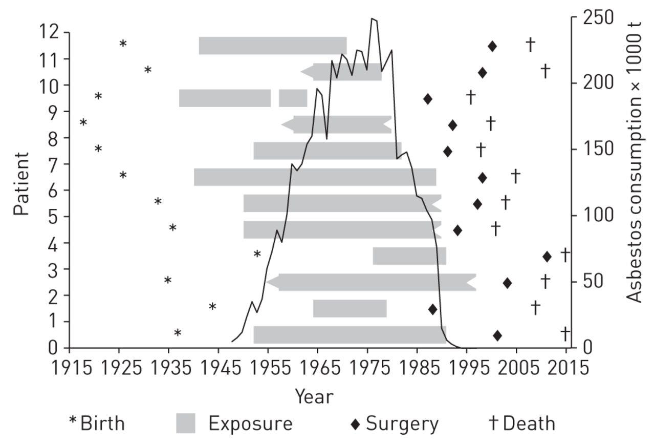 Diagram Of Breathing In Asbestos Fibers : The asbestos fibre burden in human lungs new insights