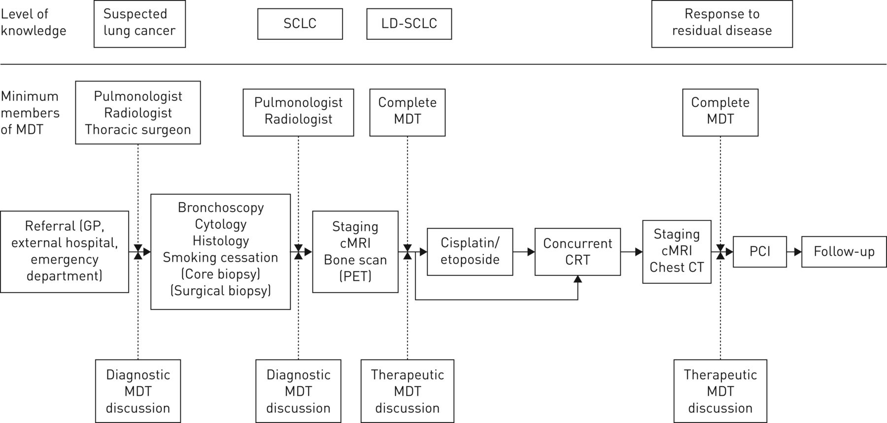 Treatment of limited disease small cell lung cancer: the
