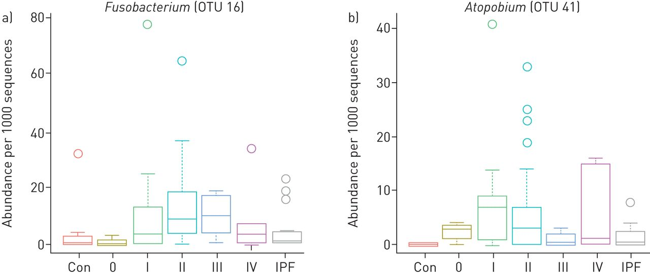 Atopobium and Fusobacterium as novel candidates for