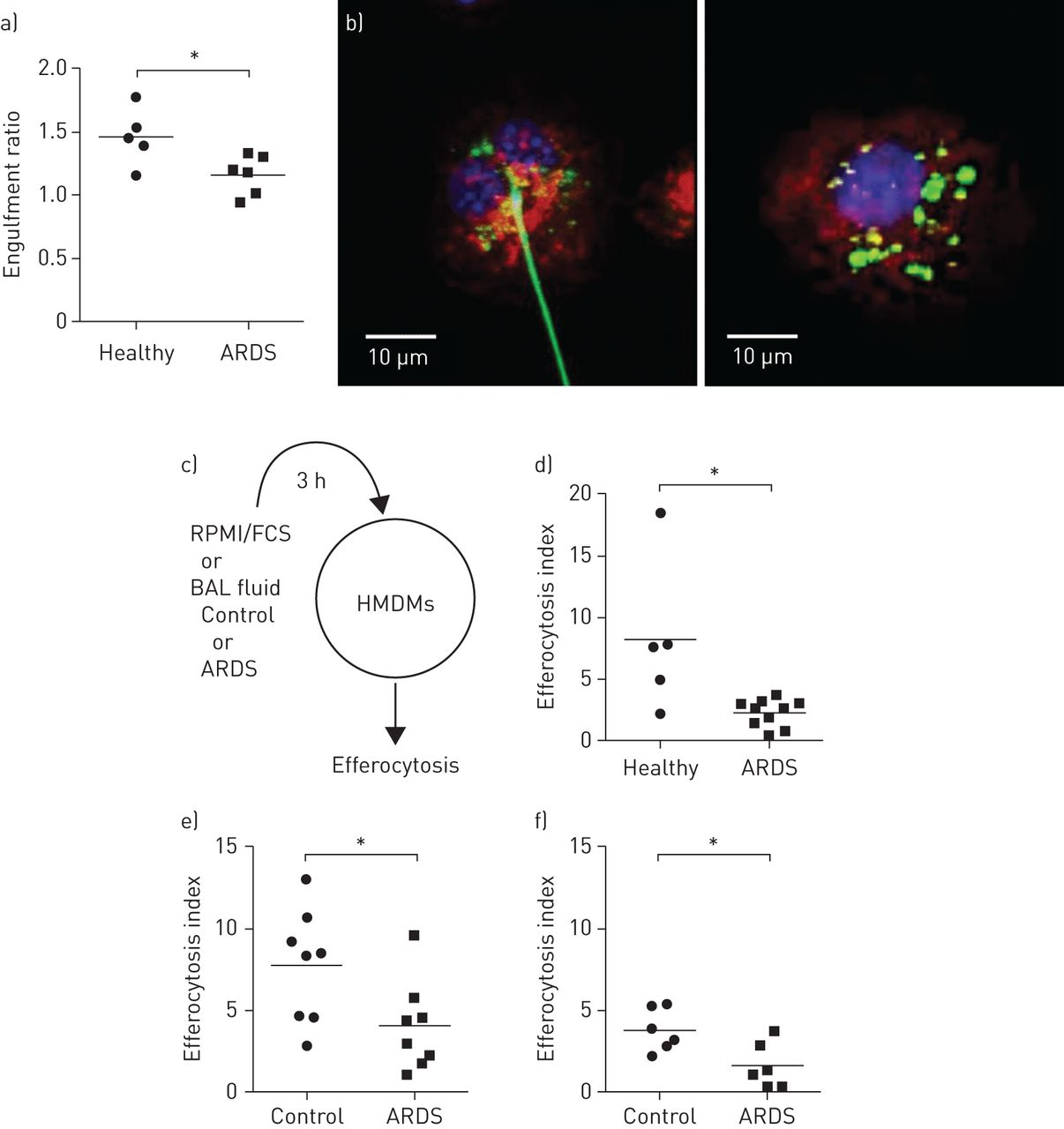 Impaired efferocytosis and neutrophil extracellular trap