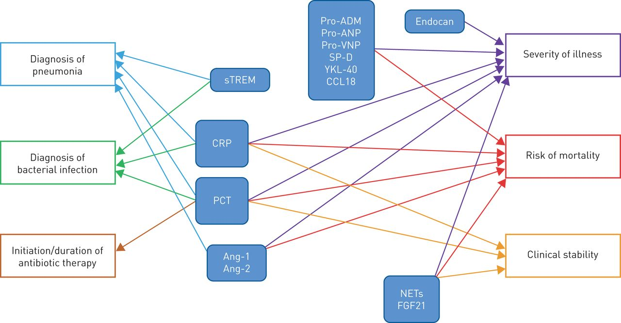 Biomarkers in community-acquired pneumonia: still searching for the