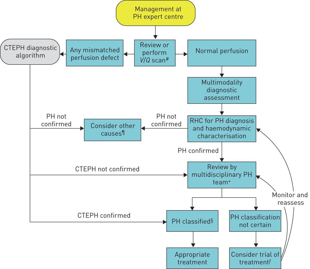 Diagnosis of pulmonary hypertension | European Respiratory