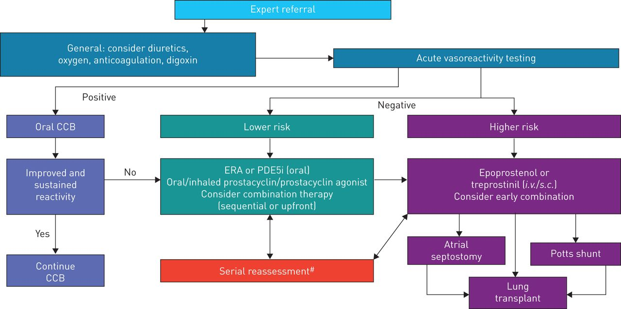 Paediatric pulmonary arterial hypertension: updates on